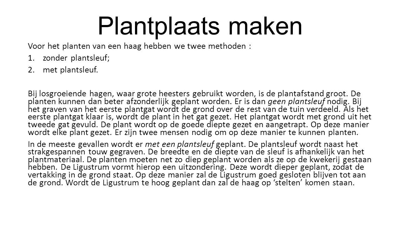 Plantplaats maken Voor het planten van een haag hebben we twee methoden : zonder plantsleuf; met plantsleuf.