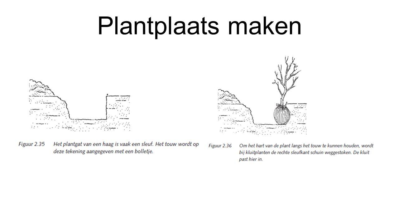 Plantplaats maken