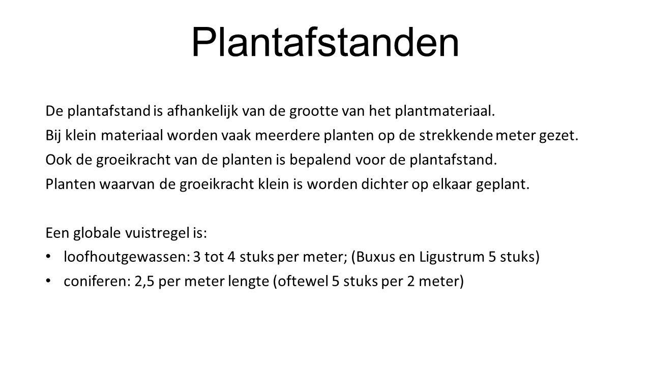 Plantafstanden De plantafstand is afhankelijk van de grootte van het plantmateriaal.