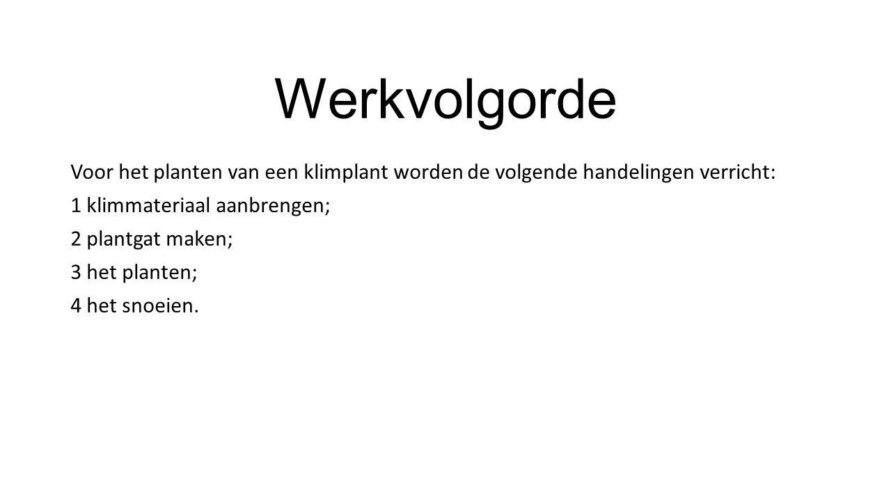 Werkvolgorde Voor het planten van een klimplant worden de volgende handelingen verricht: 1 klimmateriaal aanbrengen;