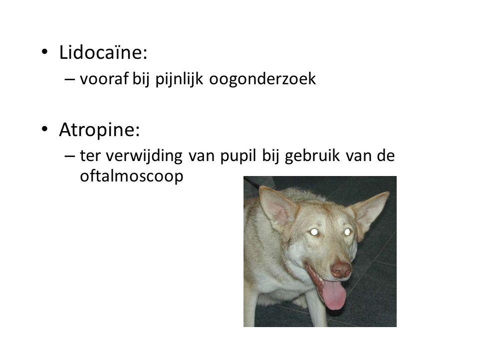 Lidocaïne: Atropine: vooraf bij pijnlijk oogonderzoek