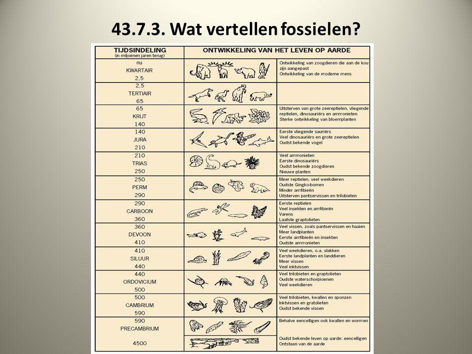 43.7.3. Wat vertellen fossielen
