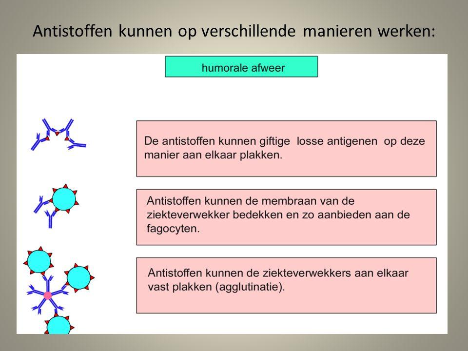 Antistoffen kunnen op verschillende manieren werken: