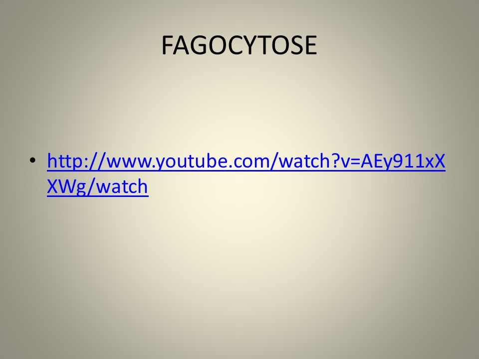 FAGOCYTOSE http://www.youtube.com/watch v=AEy911xXXWg/watch