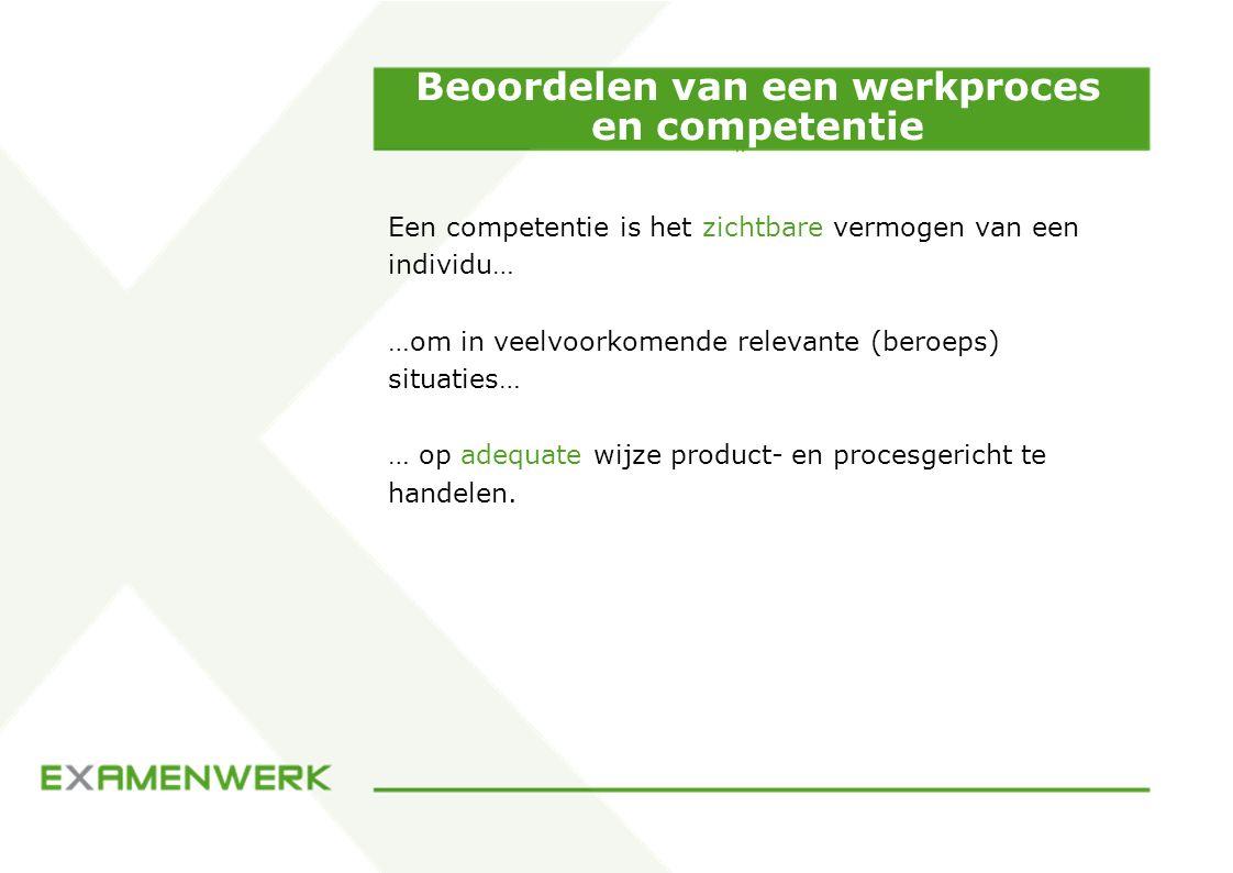 Beoordelen van een werkproces en competentie