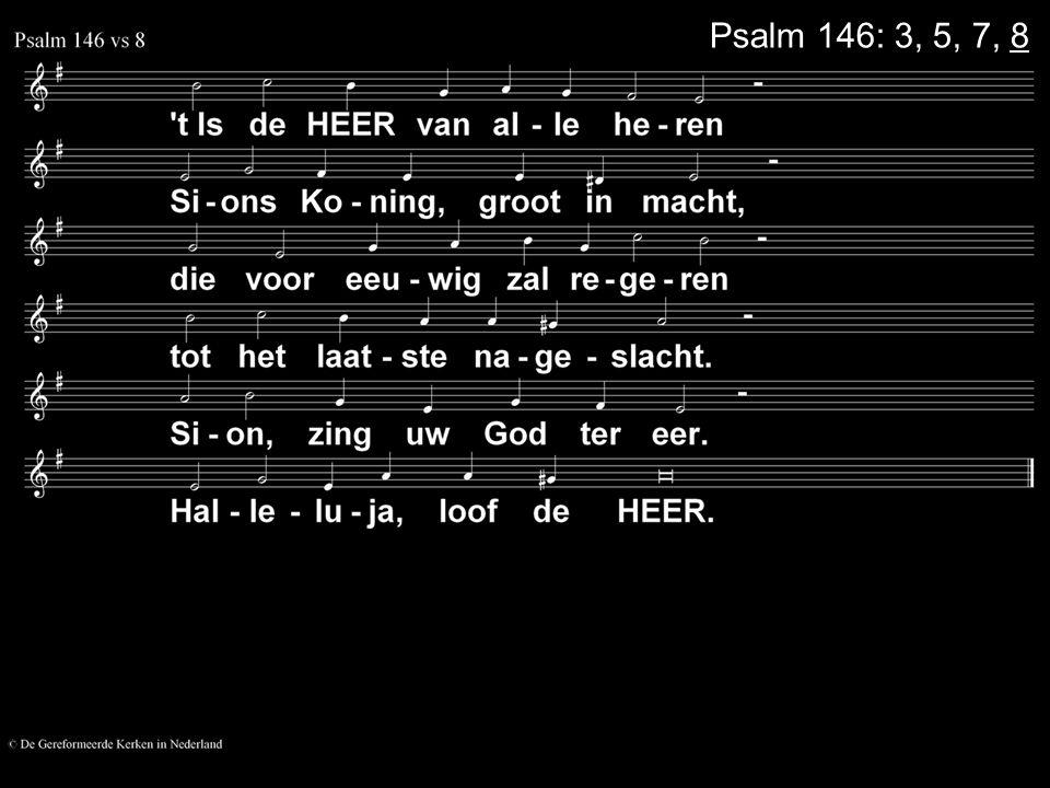 Psalm 146: 3, 5, 7, 8