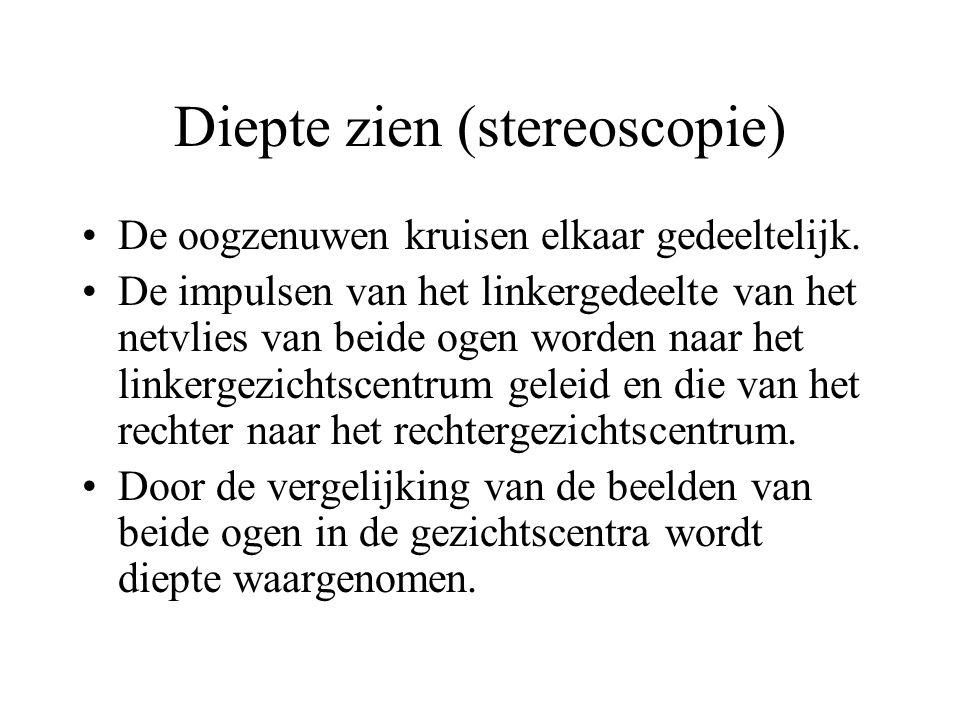 Diepte zien (stereoscopie)