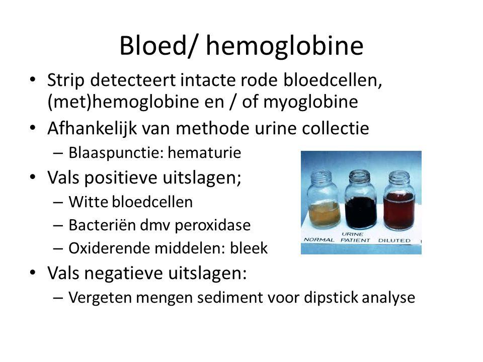 Bloed/ hemoglobine Strip detecteert intacte rode bloedcellen, (met)hemoglobine en / of myoglobine. Afhankelijk van methode urine collectie.