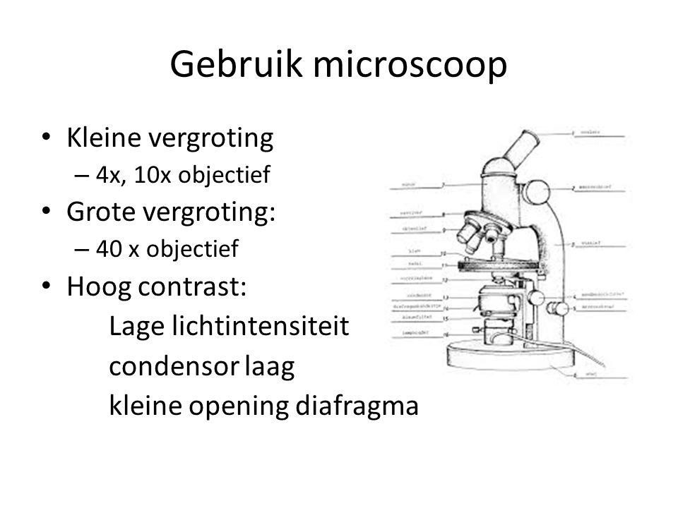 Gebruik microscoop Kleine vergroting Grote vergroting: Hoog contrast: