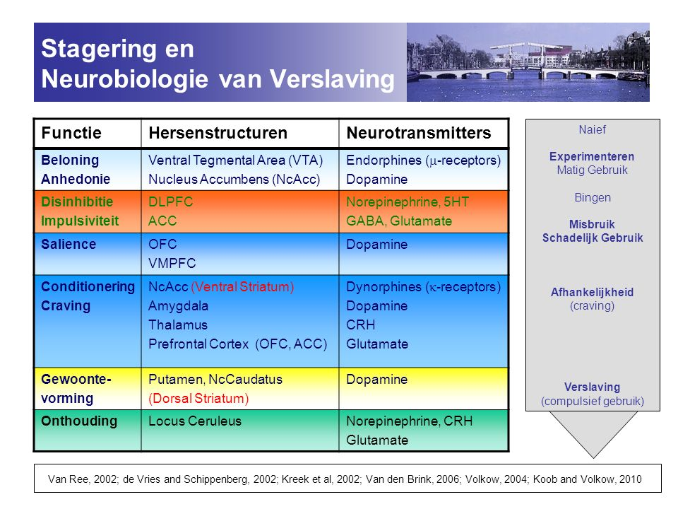 Stagering en Neurobiologie van Verslaving