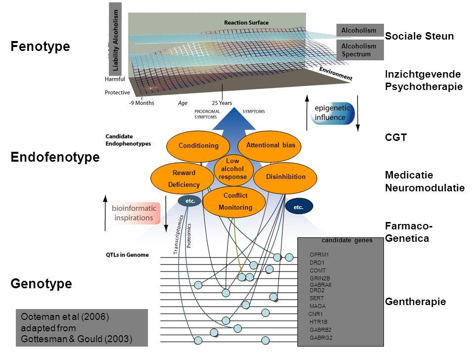 Fenotype Endofenotype Genotype Sociale Steun Inzichtgevende