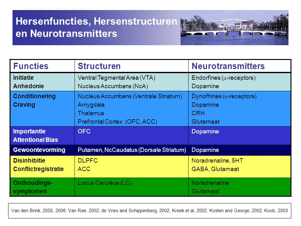 Hersenfuncties, Hersenstructuren en Neurotransmitters