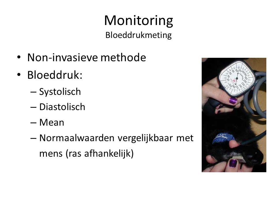 Monitoring Bloeddrukmeting