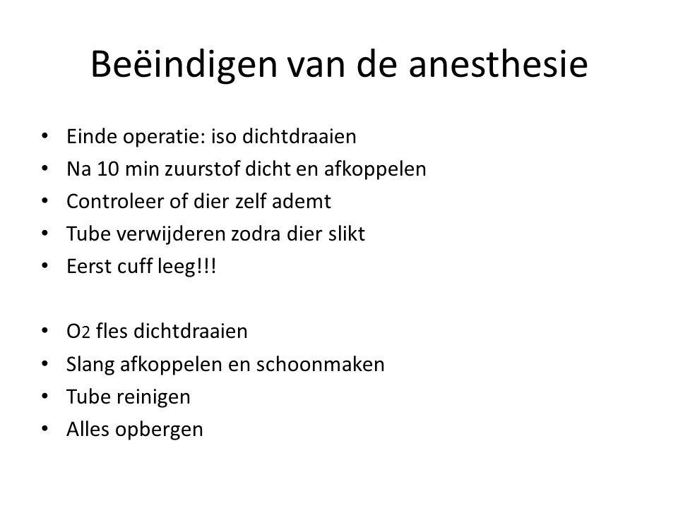 Beëindigen van de anesthesie