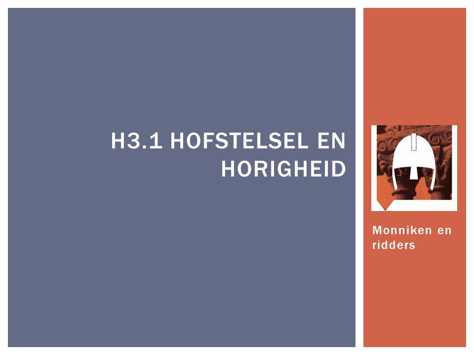 H3.1 Hofstelsel en Horigheid
