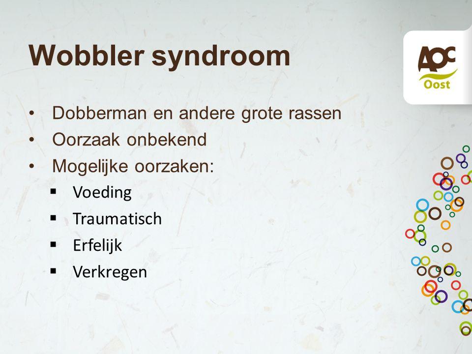 Wobbler syndroom Dobberman en andere grote rassen Oorzaak onbekend