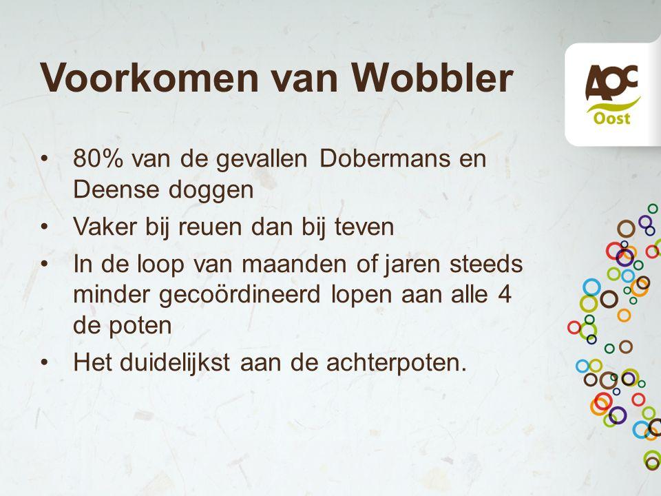 Voorkomen van Wobbler 80% van de gevallen Dobermans en Deense doggen