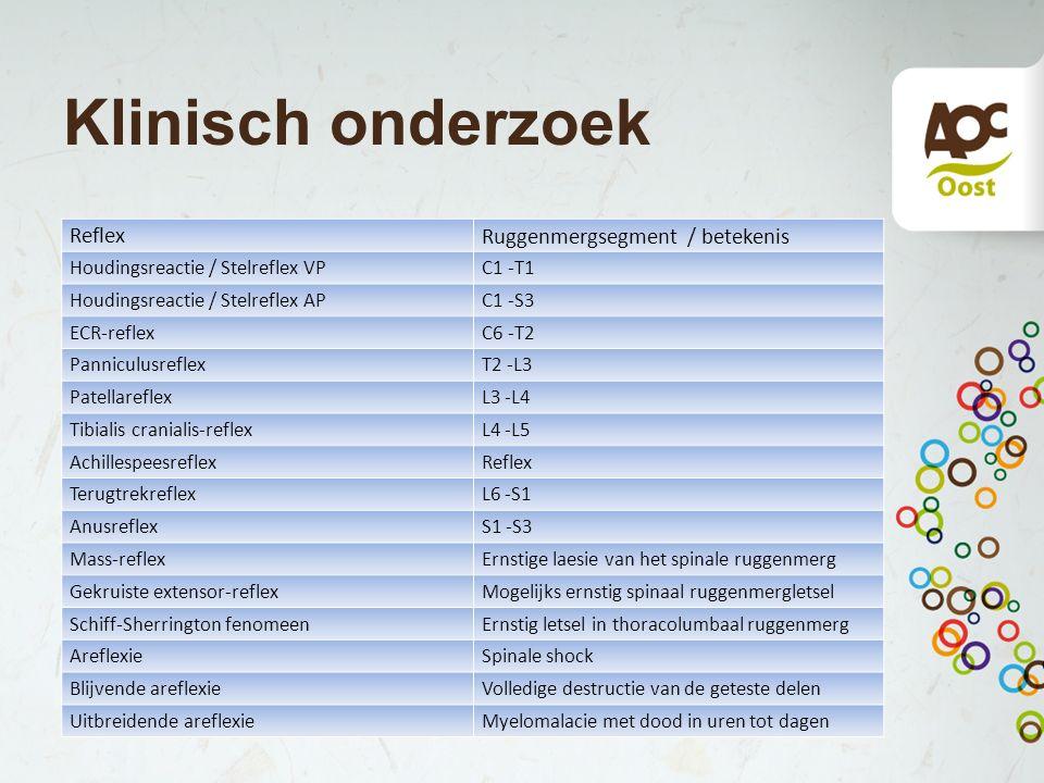 Klinisch onderzoek Ruggenmergsegment / betekenis Reflex