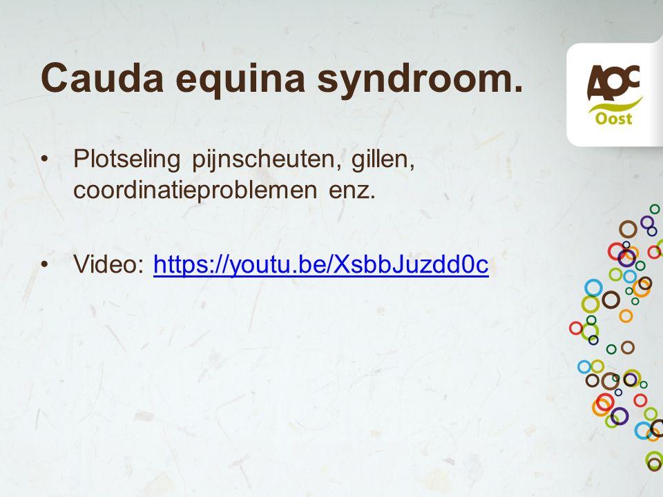 Cauda equina syndroom. Plotseling pijnscheuten, gillen, coordinatieproblemen enz.