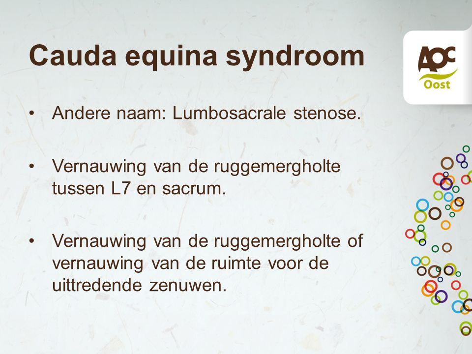Cauda equina syndroom Andere naam: Lumbosacrale stenose.