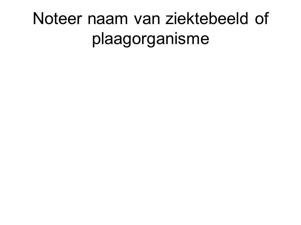 Noteer naam van ziektebeeld of plaagorganisme