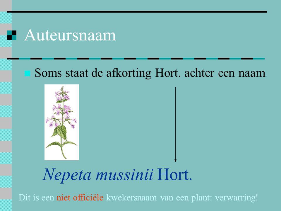 Dit is een niet officiële kwekersnaam van een plant: verwarring!