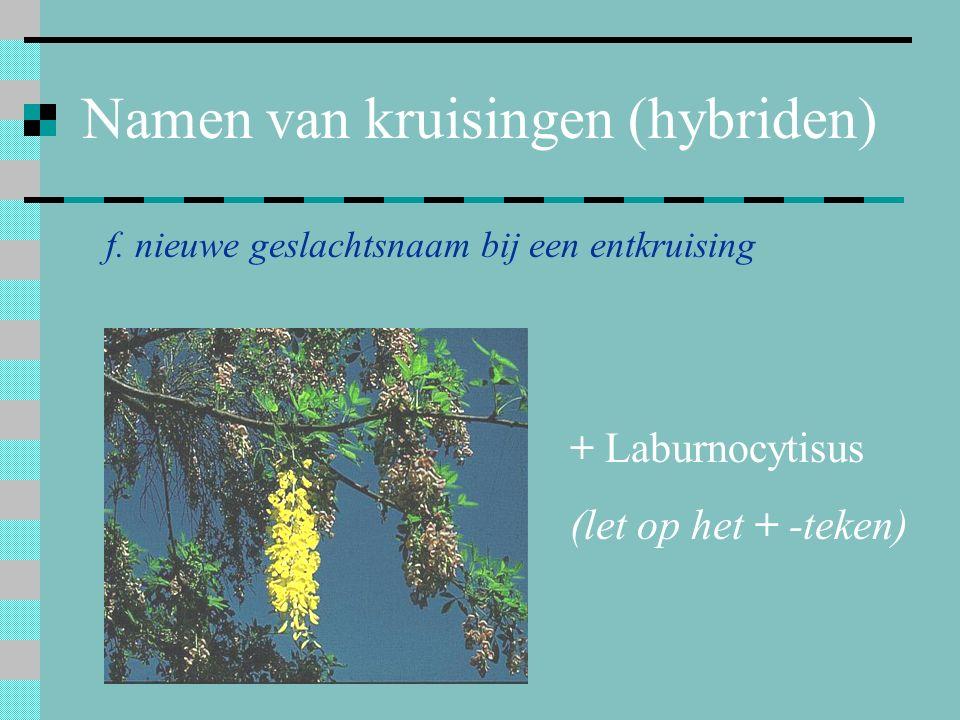Namen van kruisingen (hybriden)