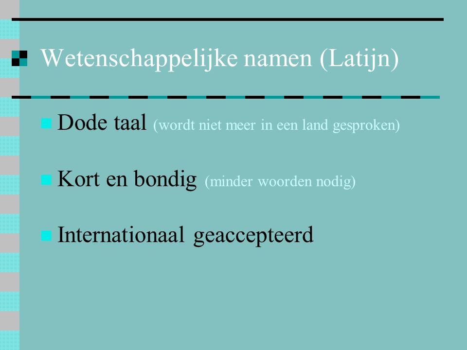 Wetenschappelijke namen (Latijn)
