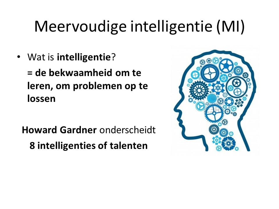 Meervoudige intelligentie (MI)