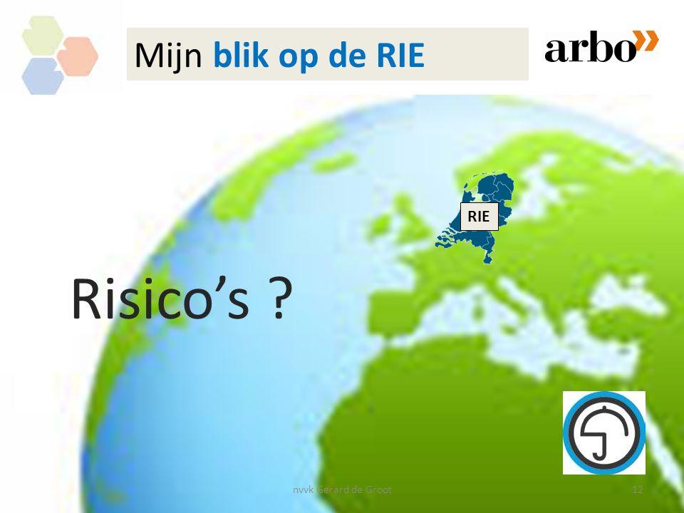 Mijn blik op de RIE RIE Risico's nvvk Gerard de Groot