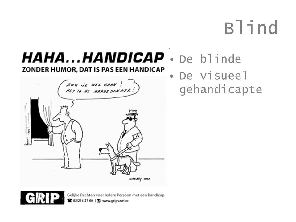 Blind De blinde De visueel gehandicapte
