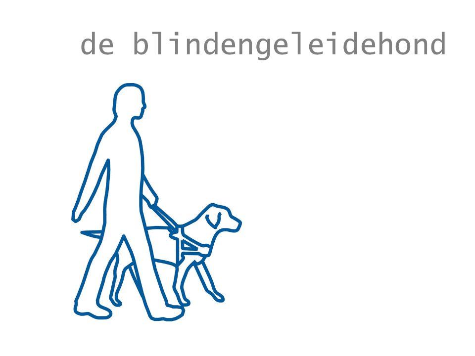 de blindengeleidehond