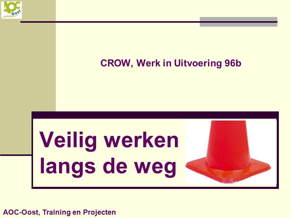 CROW, Werk in Uitvoering 96b