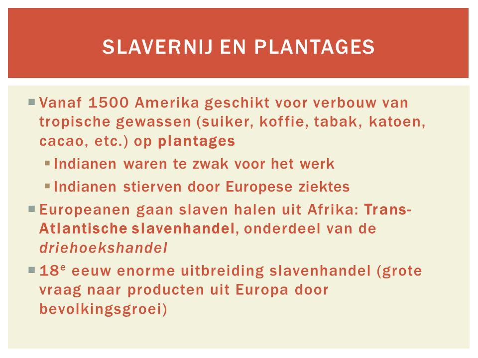 slavernij en plantages