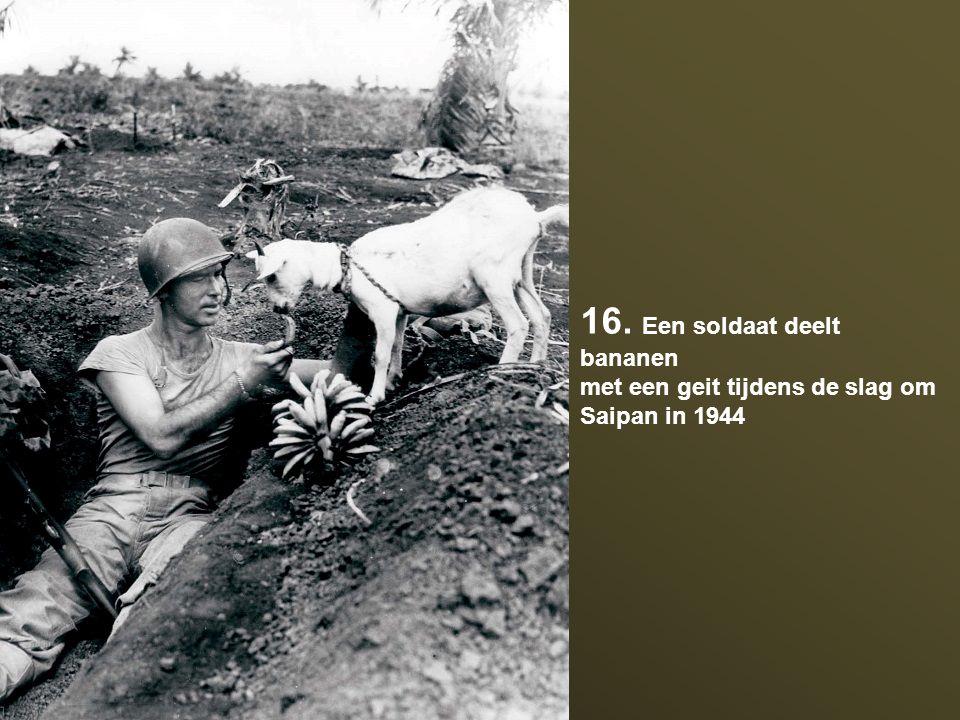 16. Een soldaat deelt bananen met een geit tijdens de slag om Saipan in 1944
