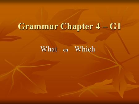 Grammar Chapter 4 – G1 What en Which.