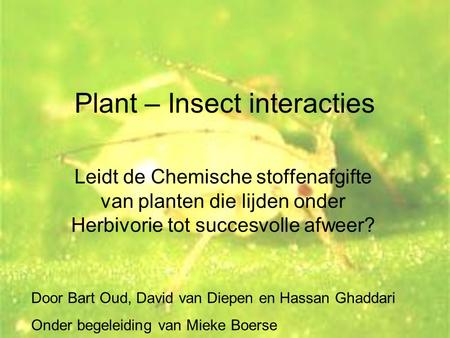 Plant – Insect interacties