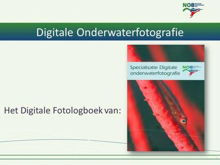 Digitale Onderwaterfotografie