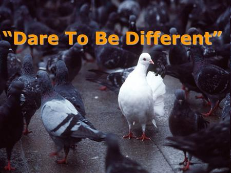 """Dare To Be Different"" DARE TO BE DIFFERENT"