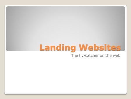 Landing Websites The fly-catcher on the web. Wat willen we op het WEB  Naamsbekendheid, profileren  Relevante (be)zoekers  kopers  klanten  Verkoop.