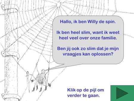 Hallo, ik ben Willy de spin.