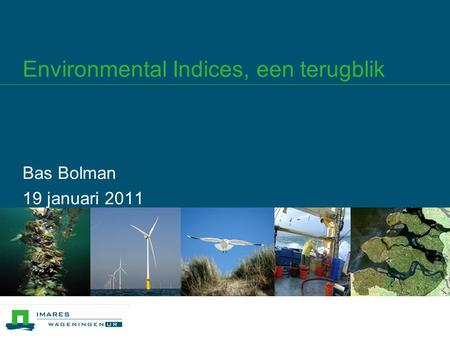 Environmental Indices, een terugblik Bas Bolman 19 januari 2011.