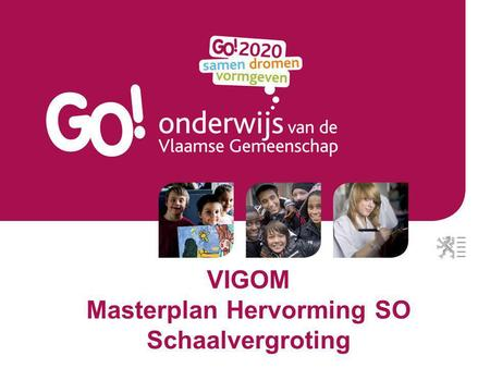 VIGOM Masterplan Hervorming SO Schaalvergroting