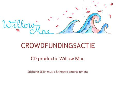 CROWDFUNDINGSACTIE CD productie Willow Mae Stichting SETH music & theatre entertainment.