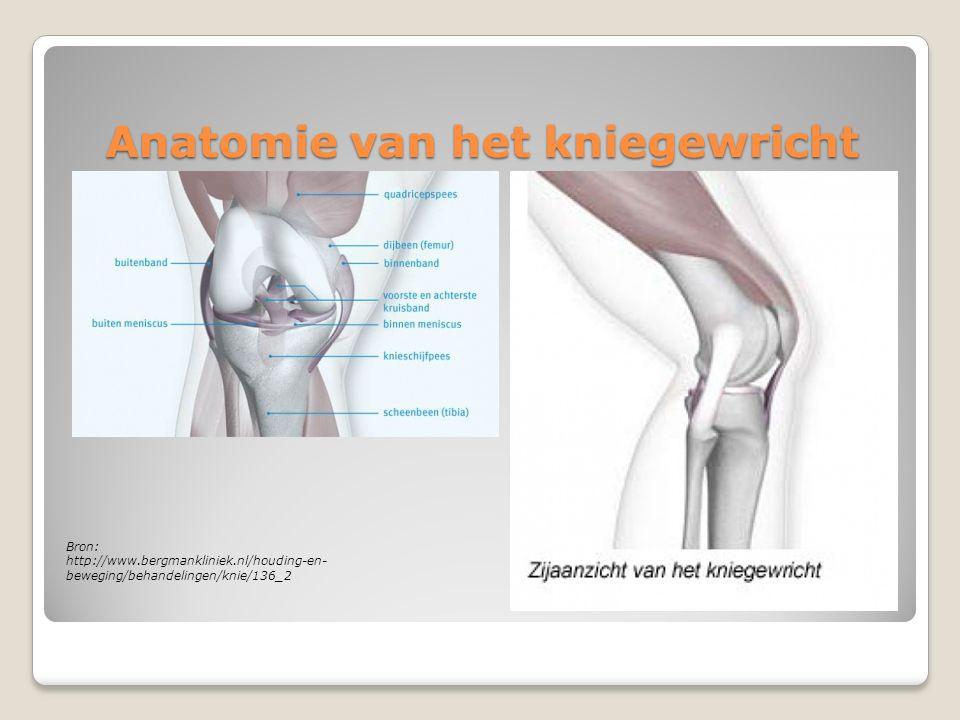 "Thuisoefenprogramma ""Anterior Knee Pain"" - ppt download"