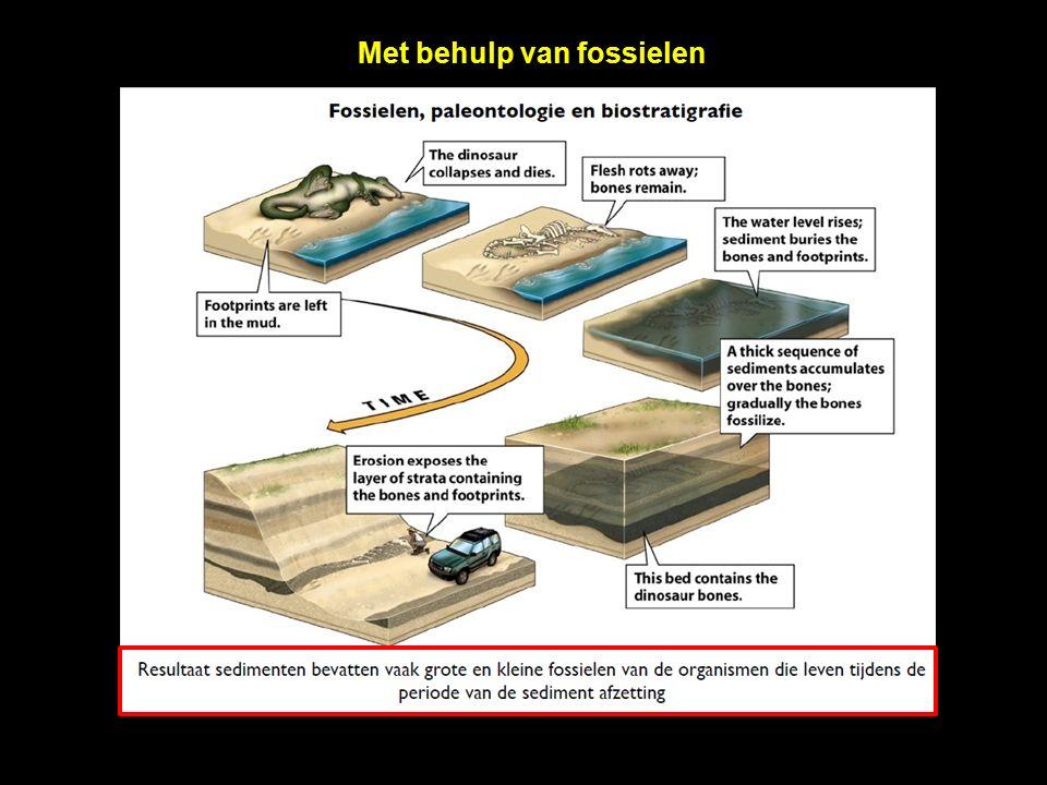 Hoe bepaal je de absolute datering van rotsen en fossielen