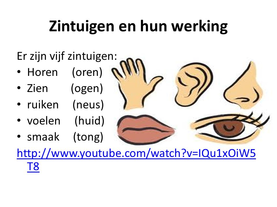 waarneming en regeling ! - ppt video online download