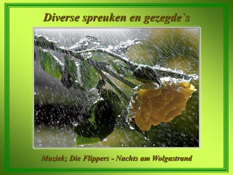 diverse spreuken Diverse spreuken en gezegde`s   ppt video online download diverse spreuken