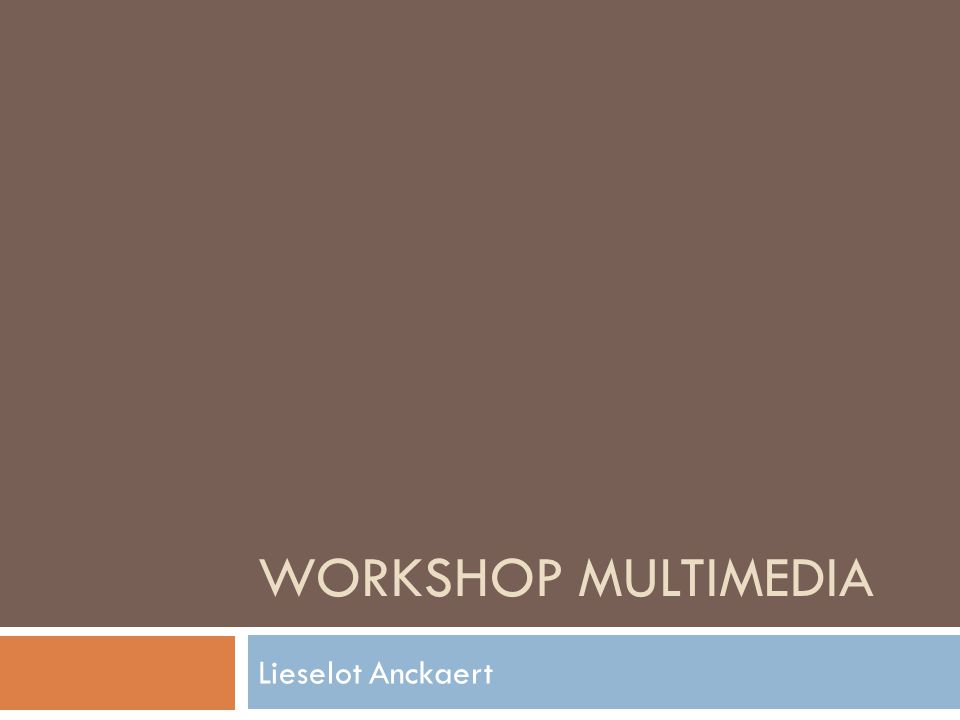 Workshop multimedia Lieselot Anckaert