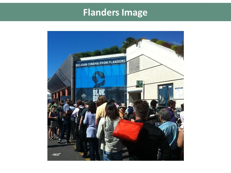 Flanders Image Cannes